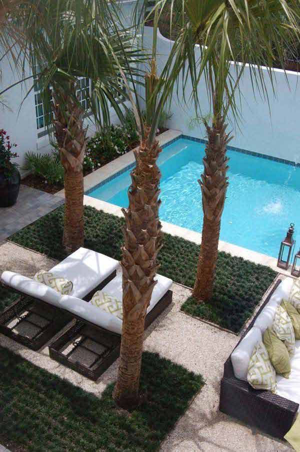 28 Mindbogglingly Alluring Small Backyard Designs Beautified by Swimming Pools homesthetics backyard (27)