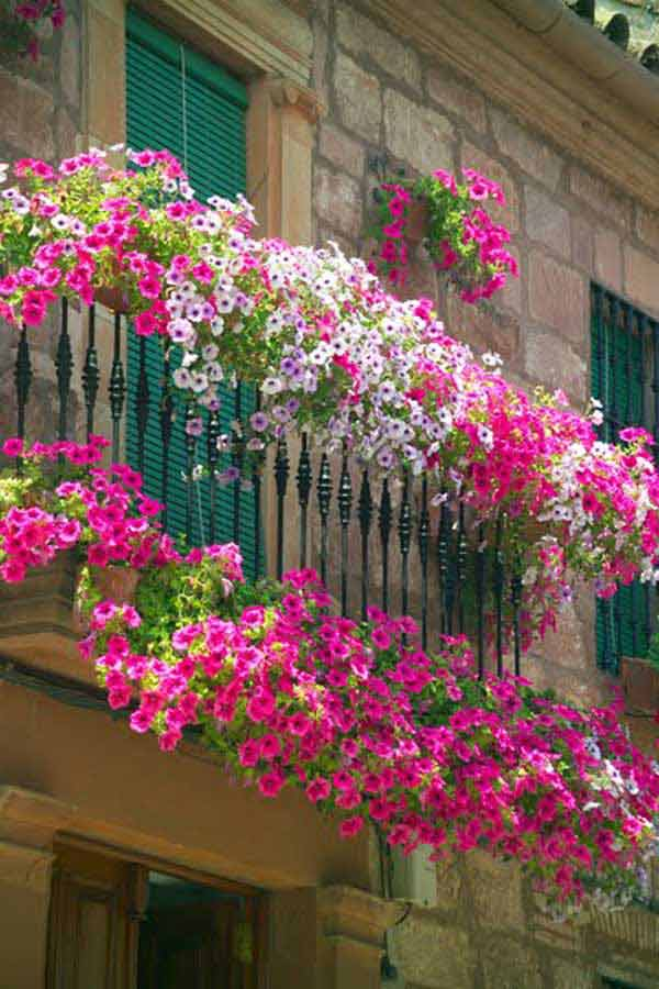 Inspiration Pack Containing 23 of the World`s Most Beautifully Flowered Balcony Gardens homesthetics decor ideas (1)