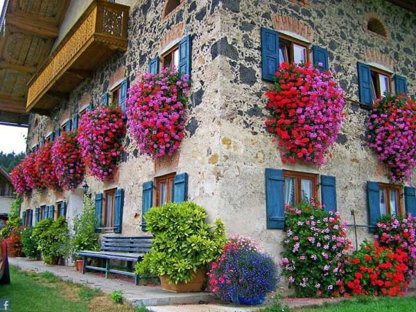 Inspiration Pack Containing 23 of the World`s Most Beautifully Flowered Balcony Gardens homesthetics decor ideas (10)