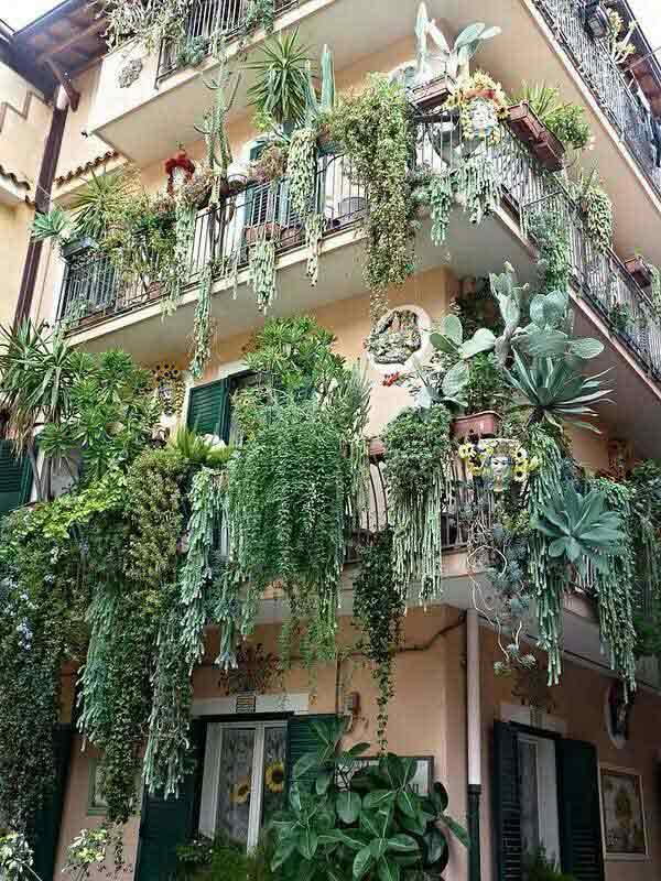 Inspiration Pack Containing 23 of the World`s Most Beautifully Flowered Balcony Gardens homesthetics decor ideas (13)