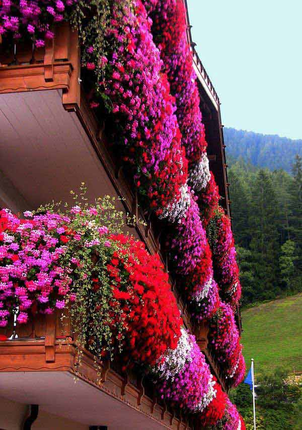 Inspiration Pack Containing 23 of the World`s Most Beautifully Flowered Balcony Gardens homesthetics decor ideas (3)