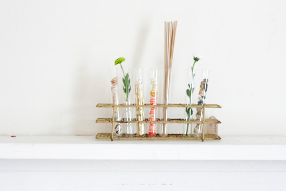 11 DIY Unique Test Tube Flower Vases- homesthetics decor (9)