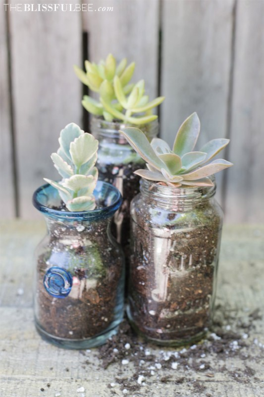 21 DIY Inspiring Ideas for Planters That Will Make Your Plants Happy homesthetics decor (17)