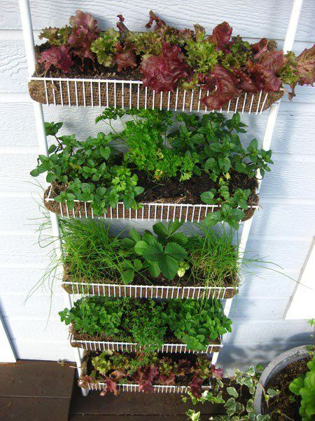 21 Simply Beautitful DIY Vertical Garden Projects That Will Transform Your Design homesthetics design (10)