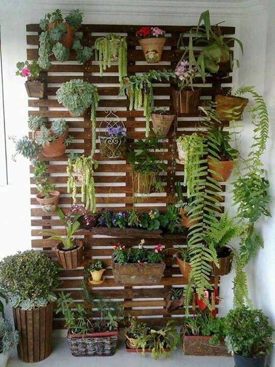 21 Simply Beautitful DIY Vertical Garden Projects That Will Transform Your Design homesthetics design (2)