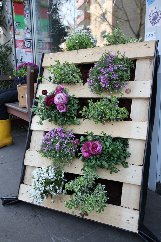 WOODEN PALLETS TRANSFORMED INTO PLANTERS