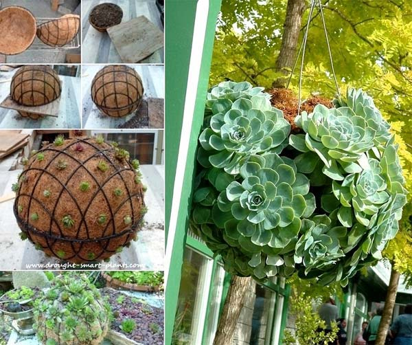 28 Ways to Accesorize Your Household With Creative DIY Hanging Planters homesthetics greenery (3)