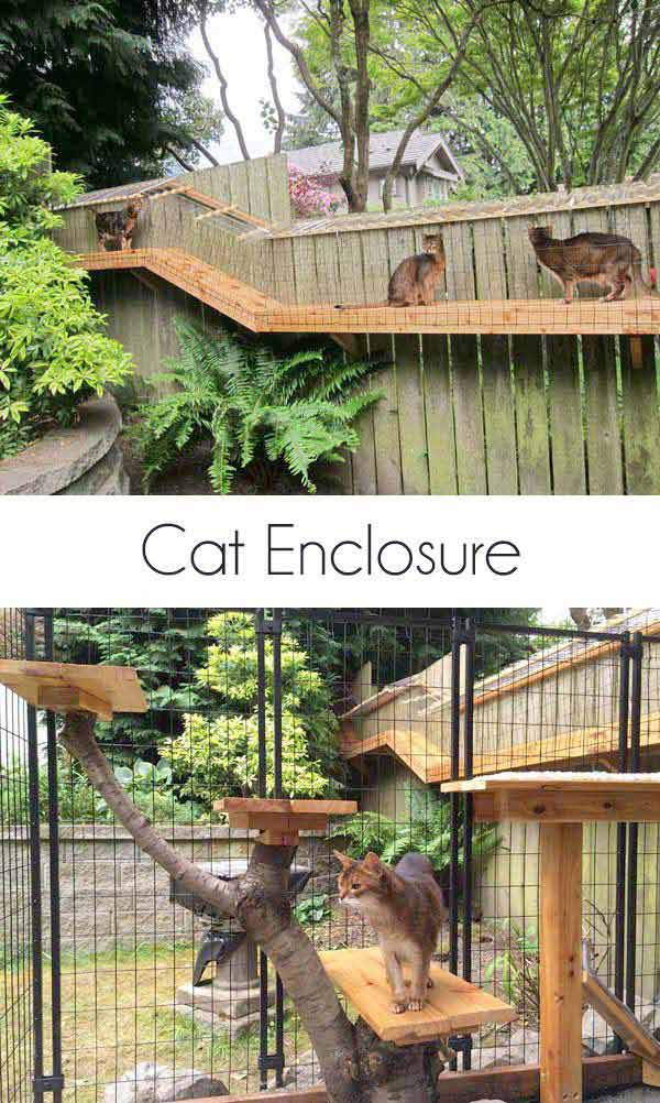 20 DIY Pet Craft Projects That Will Change The Life of Your Furry Friends homesthetics diy projects for pets (2)