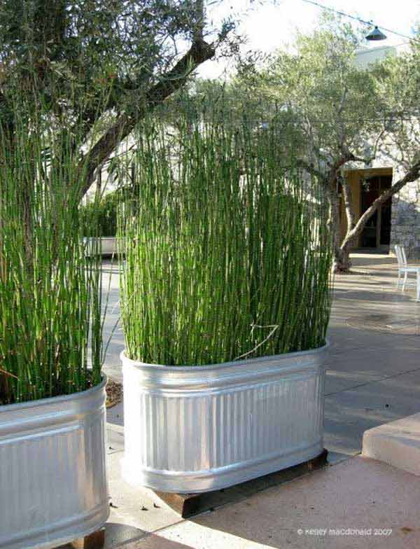 16. Huge Buckets With Tall Grass - 22 Simply Beautiful Low Budget Privacy Screens For Your Backyard