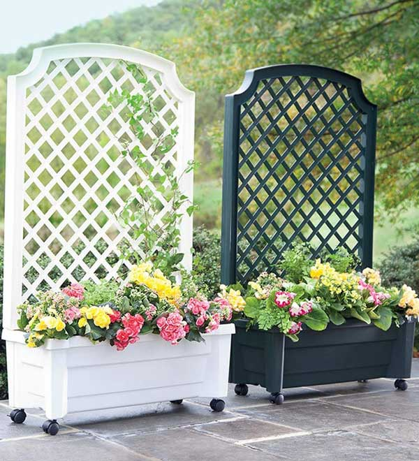 Trend  Simply Beautiful Low Budget Privacy Screens For Your Backyard homesthetics decor