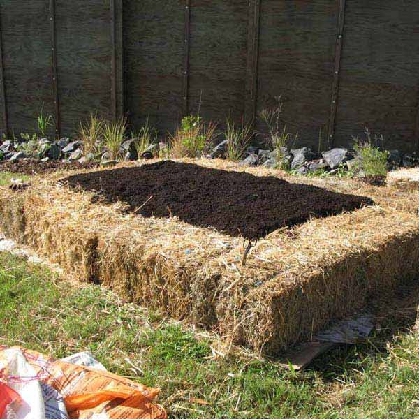 27+ DIY Garden Bed Edging Ideas Ready to Emphasize Your Greenery homesthetics backyard landscaping (18)