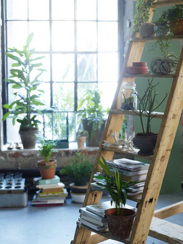 38 Ingenious Ways to Up-cycle Repurpose and Reuse Vintage Ladders homeshetics decor (27)