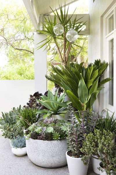 Transform Any Corner Into A Green Heaven With Creative Gardening Projects-homesthetics.net (4)