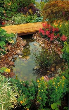 19 Simply Breathtaking Backyard Pond Designs to Materialize Between Greenery homesthetics decor (10)