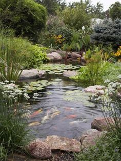 19 Simply Breathtaking Backyard Pond Designs to Materialize Between Greenery homesthetics decor (17)