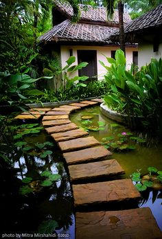 19 Simply Breathtaking Backyard Pond Designs to Materialize Between Greenery homesthetics decor (18)
