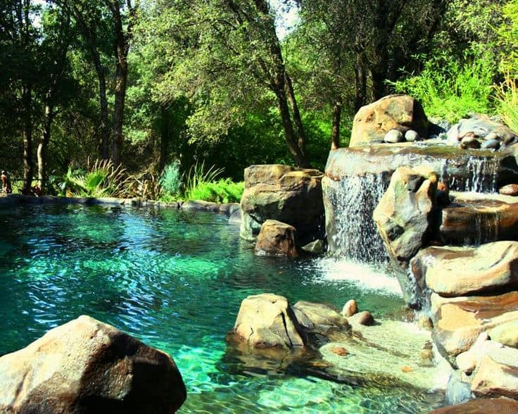 19 Simply Breathtaking Backyard Pond Designs to Materialize Between Greenery homesthetics decor (4)