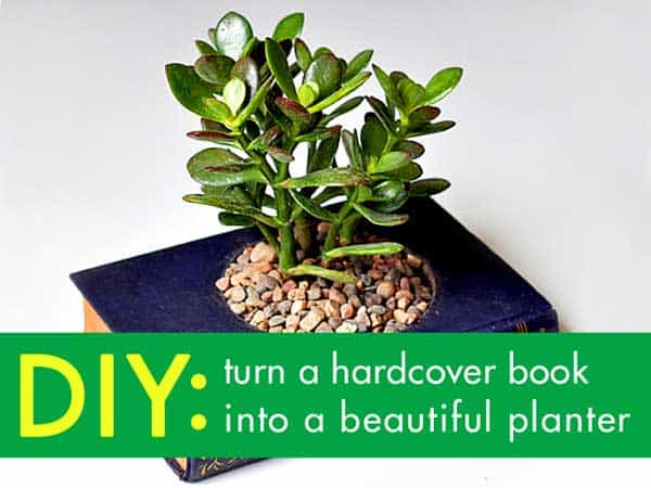 24 Highly Creative Yet Inexpensive Recycled Flower Pots For Your Household homesthetics decor (18)
