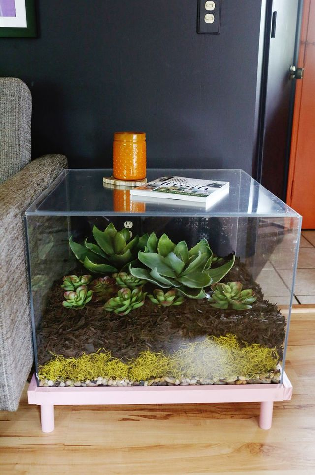 Charmant DISPLAY YOUR BEAUTIFUL SUCCULENT GARDEN INDOORS IN AN UNIQUE DIY COFFEE  TABLE