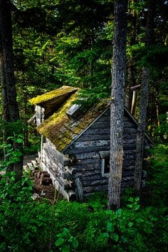 Surreal Log and Wood Cabins Exposed To The Wilderness-homesthetics (2)