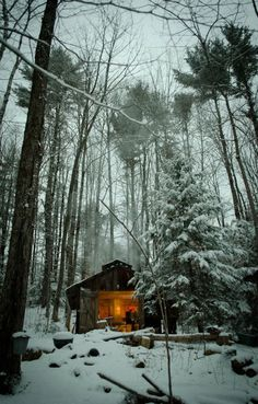 Surreal Log and Wood Cabins Exposed To The Wilderness-homesthetics (8)