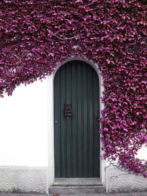 Top 20 Out Of This World Door Designs-homesthetics (19)