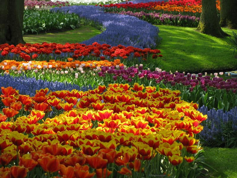 20 Of The Most Beautiful Nature Made And Man Made Flower Gardens In The World (1)
