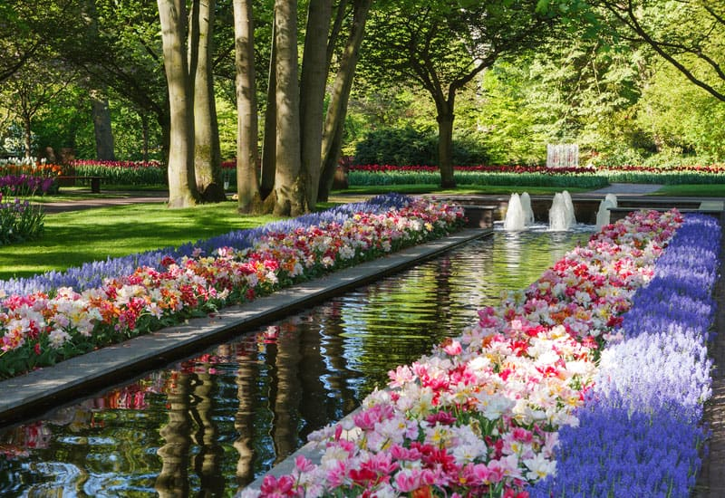 Of The Most Beautifully Designed Flower Gardens In The World