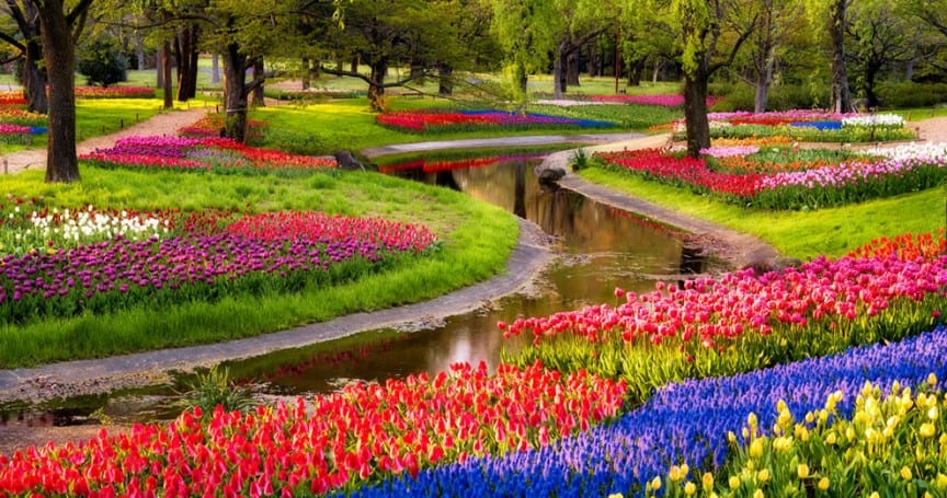 13 of the most beautifully designed flower gardens in the for Beautiful flower landscapes