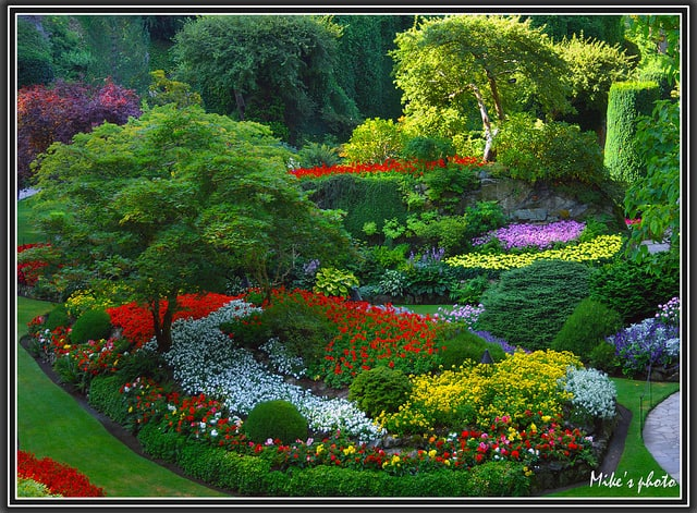 20 Of The Most Beautiful Nature Made And Man Made Flower Gardens In The World (7)