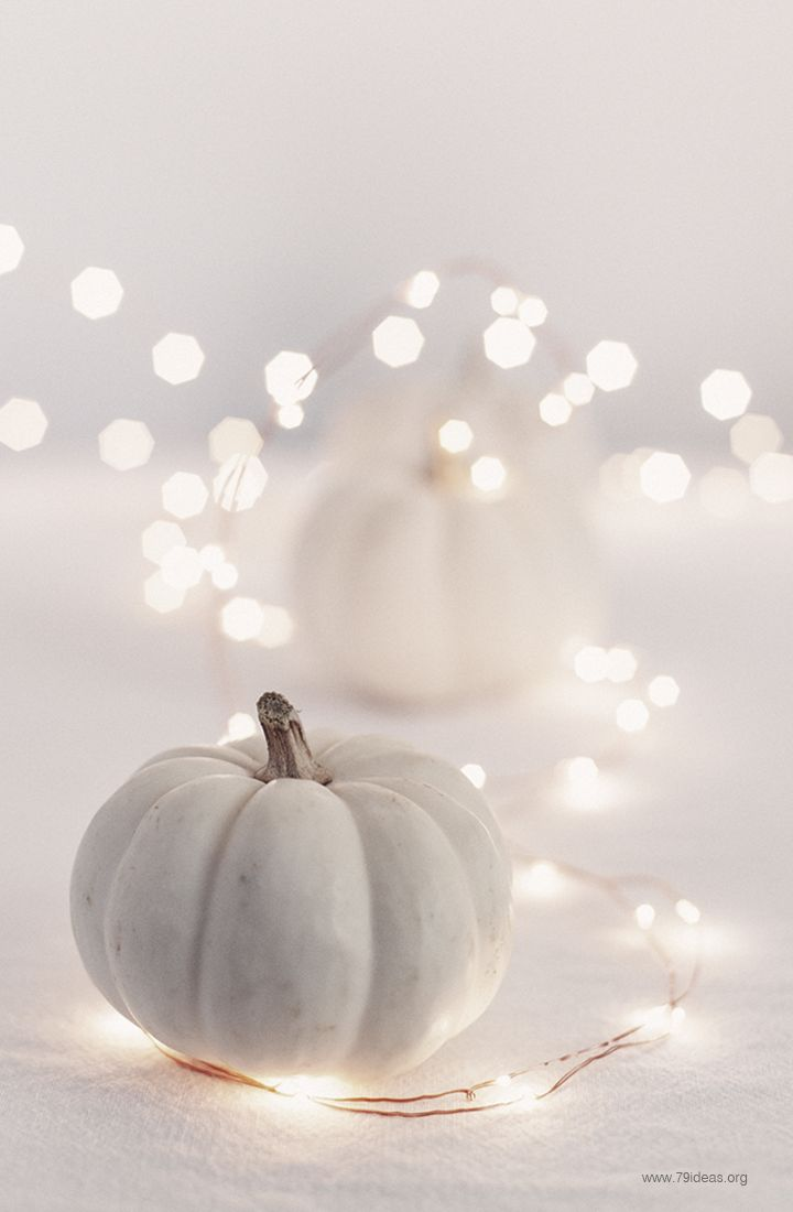 21 Charming White Pumpkin Fall Decorations For Your Household homesthetics decor (14)