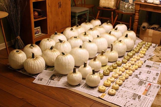 21 Charming White Pumpkin Fall Decorations For Your Household homesthetics decor (19)
