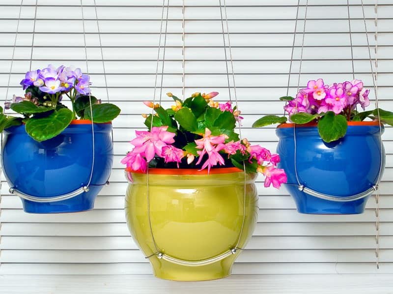 flower pot ideas 16 hanging flower pot plant ideas to enhance your veranda 13330