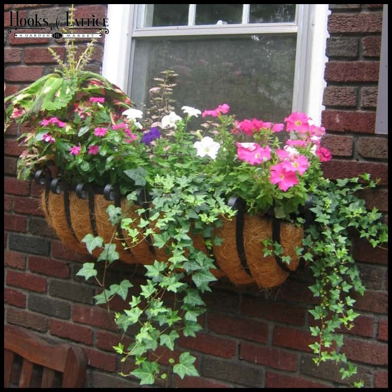 16 Hanging Flower Pot Plant Ideas To Enhance Your Veranda ... on Hanging Plants Ideas  id=17373