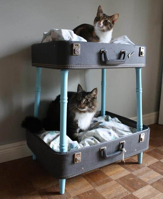 25 Beautifully Creative Ways to Recycle Vintage Suitcases at Home homesthetics decor (25)
