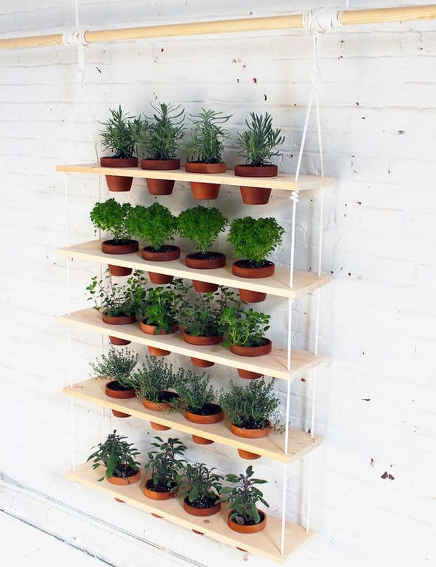 30 Awesome Indoor Garden Planting Projects To Start In The New Year (10)