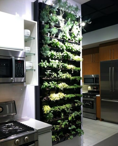 30 Awesome Indoor Garden Planting Projects To Start In The New Year (11)