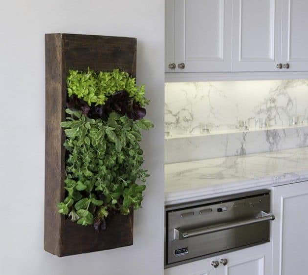 30 Awesome Indoor Garden Planting Projects To Start In The New Year (13)