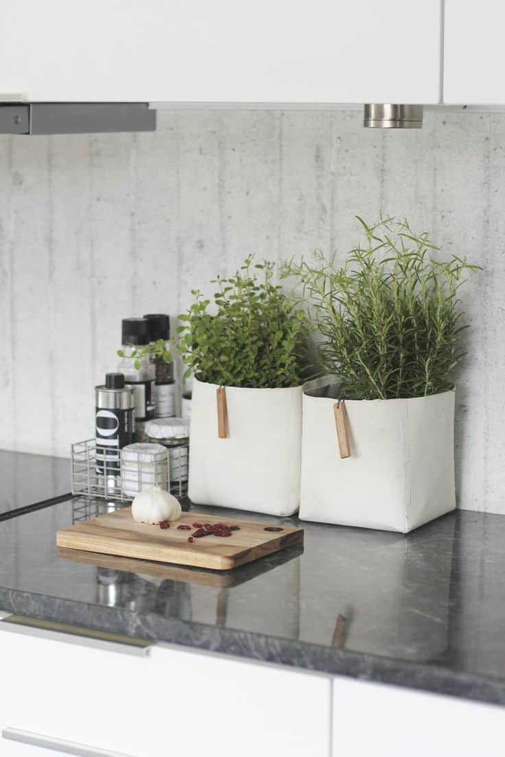 30 Awesome Indoor Garden Planting Projects To Start In The New Year (18)