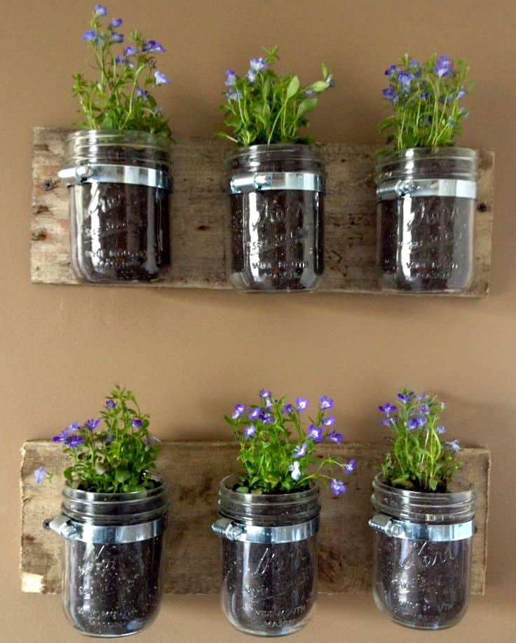 30 Awesome Indoor Garden Planting Projects To Start In The New Year (24)