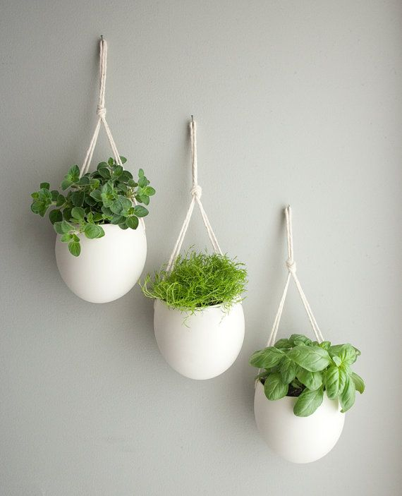 30 Awesome Indoor Garden Planting Projects To Start In The New Year (28)