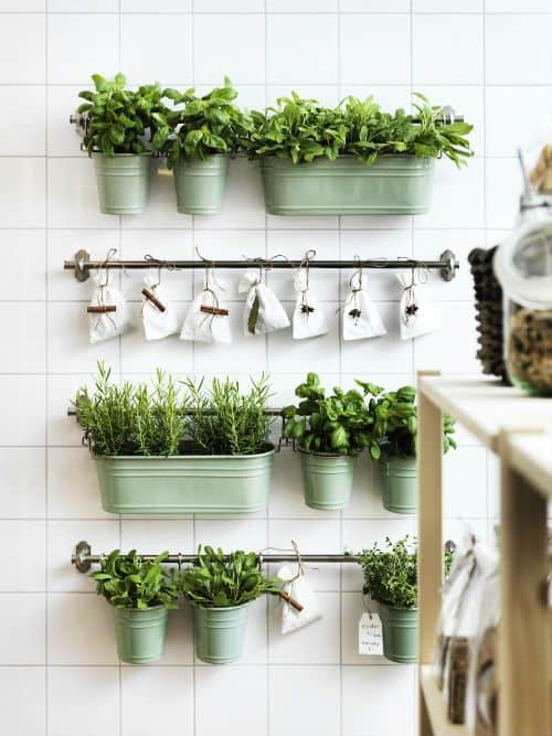 30 Awesome Indoor Garden Planting Projects To Start In The New Year (30)