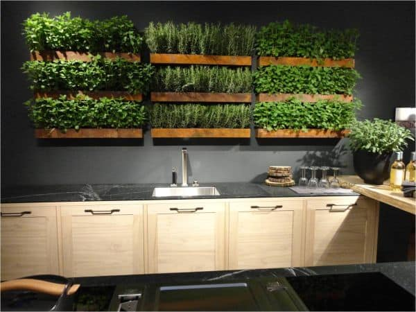 30 Awesome Indoor Garden Planting Projects To Start In The New Year (9)