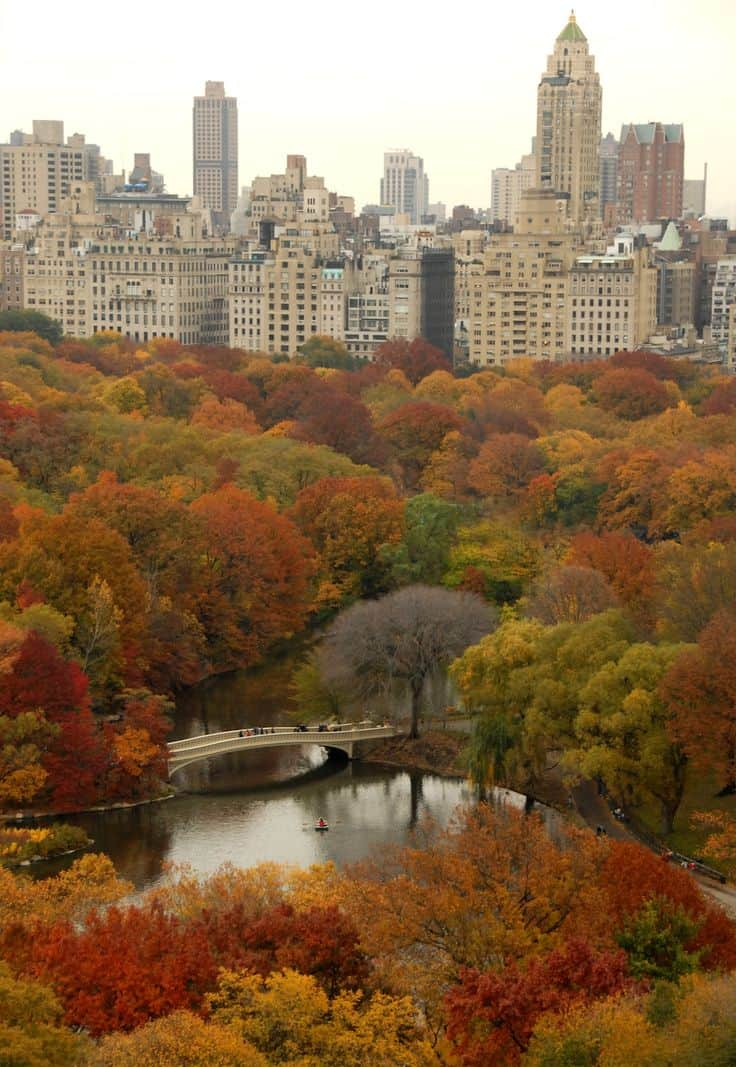 #21 New York's Central Park during autumn in all its splendor and glory