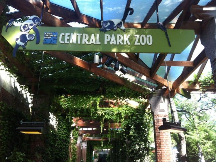#23 Central Park Zoo opened in 1964 for the conservation of wildlife