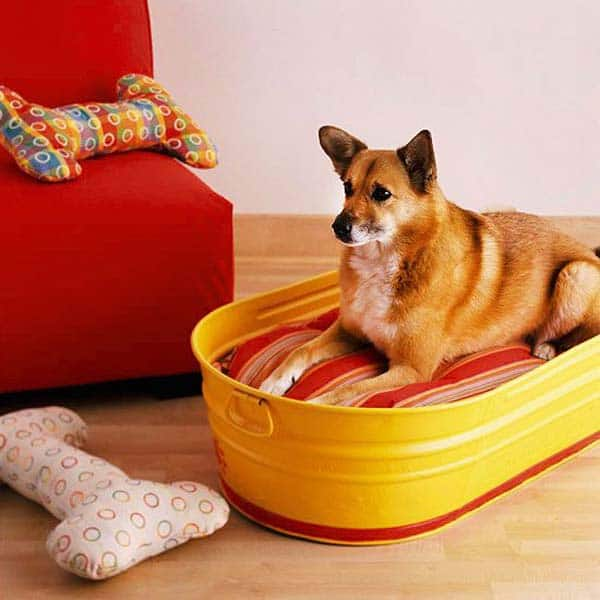 #30 YOUR PET MIGHT MAKE USE OF A AN OLD TINY BATHTUB