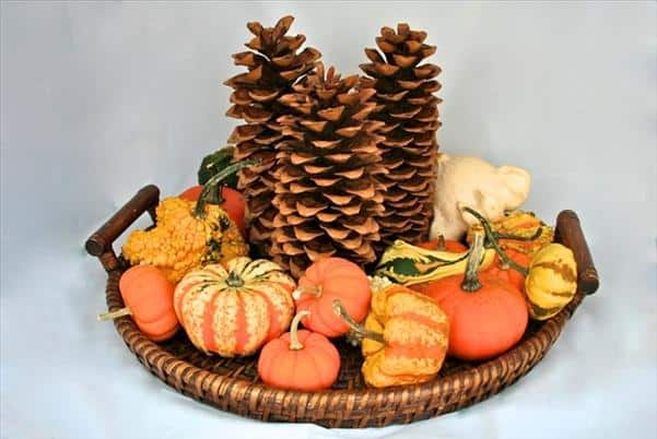 19 Neat Inexpensive DIY Thanksgiving Decoration For Every Household homesthetics decor (4)