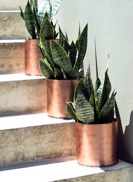 DECORATE YOUR STAIRCASE WITH THESE DIY RUSTIC MODERN COPPER PLANTERS
