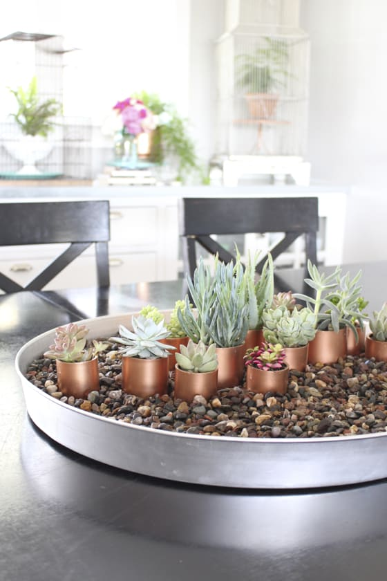 A BEAUTIFUL DIY COPPER SUCCULENT ARRANGEMENT