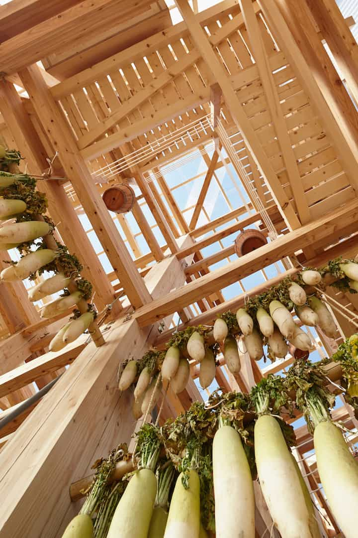Nest We Grow Timber Structure In The Island of Hokkaido by KK homesthetics (4)